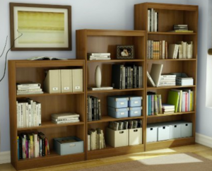 bookshelves - Invisible Bookshelves